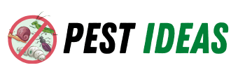Pest Ideas