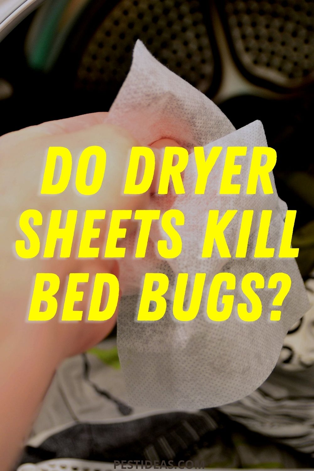 Do Dryer Sheets Kill Bed Bugs