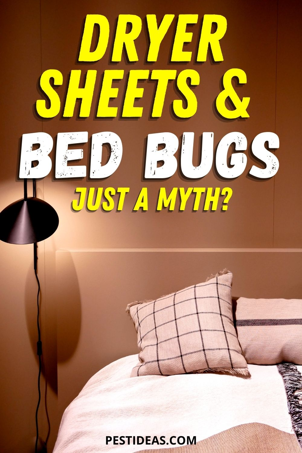 Dryer Sheets & Bed Bugs
