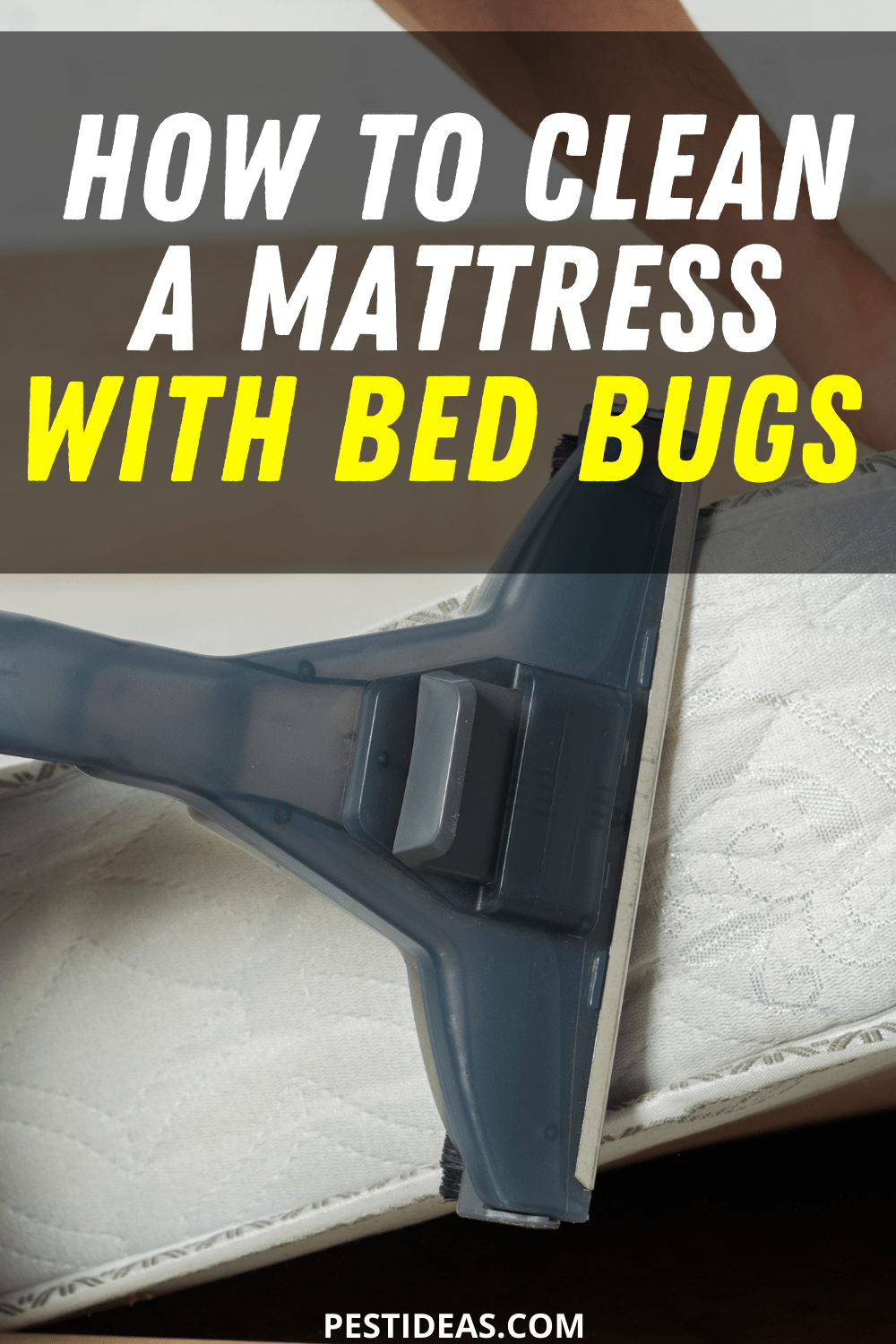 How to Clean a Mattress With Bed Bugs