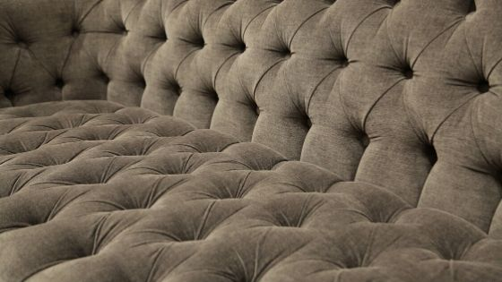get rid of bed bugs in couch