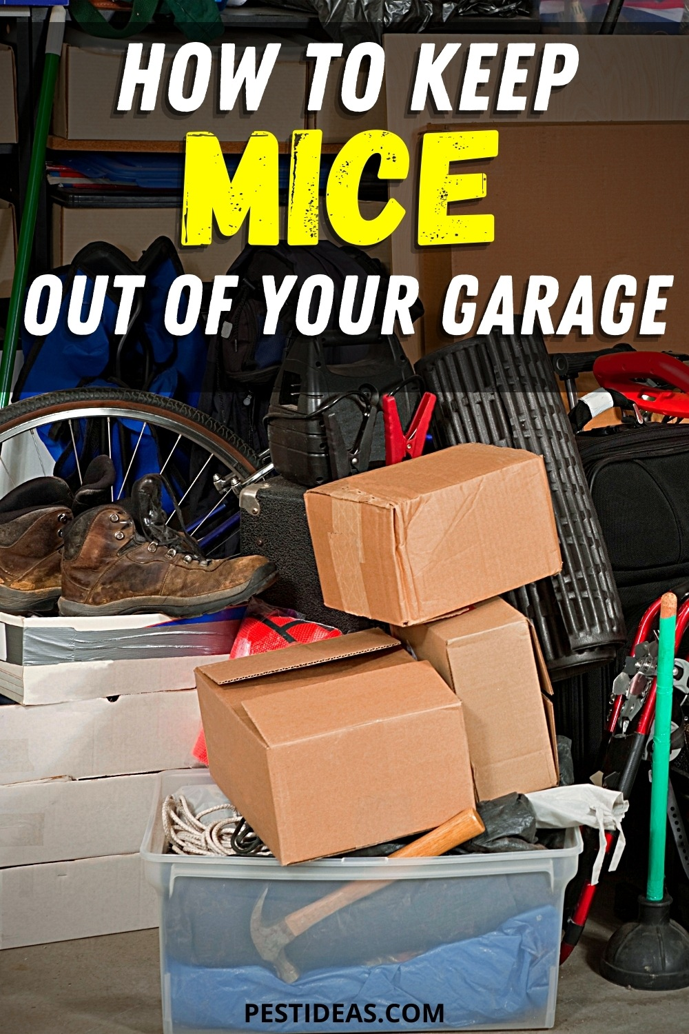 How to keep mice out of your garage