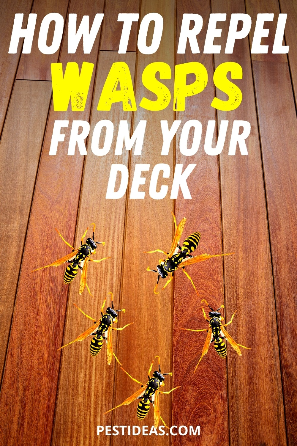 Repel Wasps From Your Deck