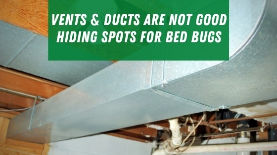bed bugs dont hide in vents or ducts