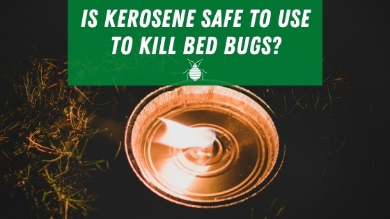Is Kerosene safe to use to kill bed bugs