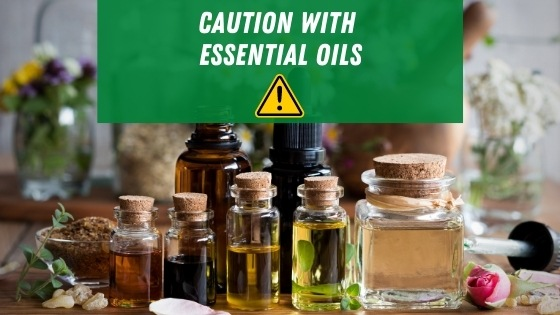 caution with essential oils for bed bugs