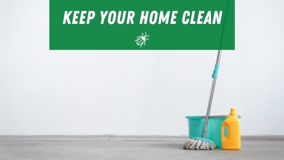 Keep your house clean