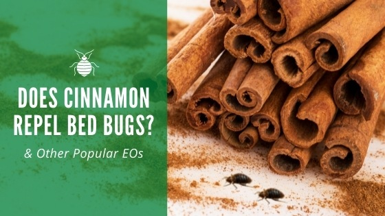 Does cinnamon repel bed bugs