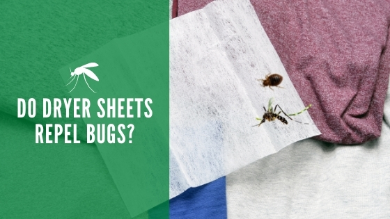Do dryer sheets repel bugs