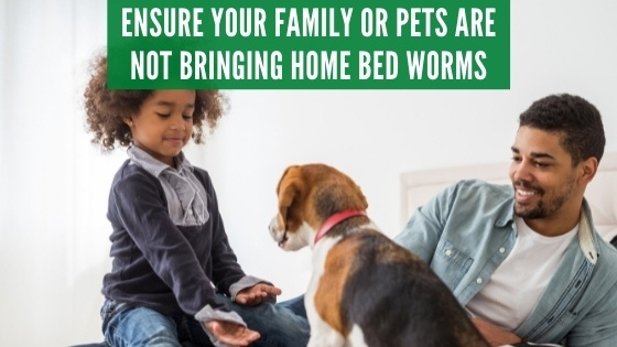 bring home bed worms